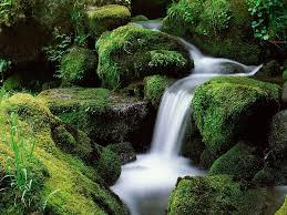 Jesus, a fonte de água viva 5