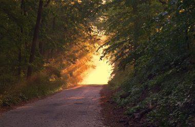 Bem aventurado aquele que anda nos seus caminhos
